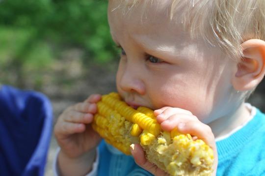 child-559415_1280.jpg